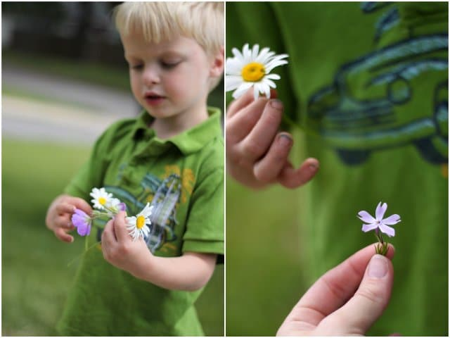 Counting flower petals - one of many great nature activities for kids to do!