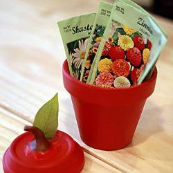 Apple Pot Jars Teacher Gift