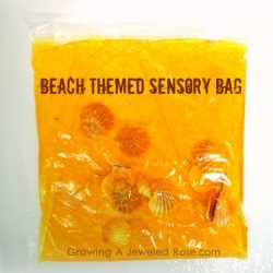 Beach-Themed Sensory Bag