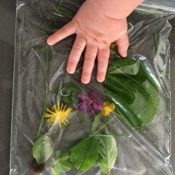 Easy Nature Sensory Bags
