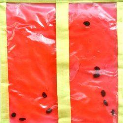 Watermelon Squish Bag