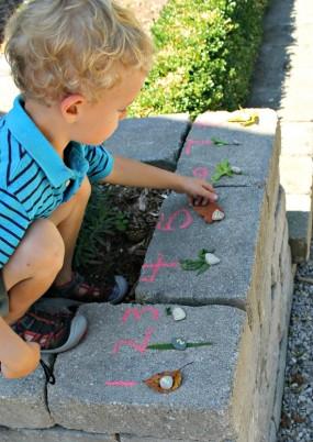Nature Walk Scavenger Hunt: Leaf Counting