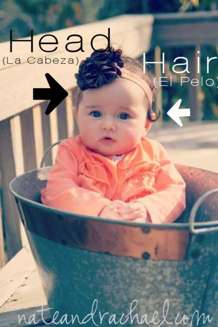 Head-Hair-Copysmall