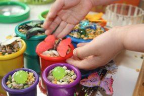 Butterflies & Beans Sensory Bin from Little Bins for Little Hands