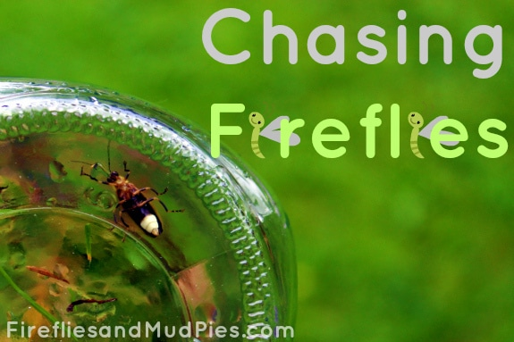 chasing-fireflies