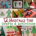 christmas-trees-015