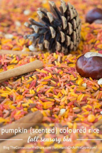 Pumpkin Scented Rice Sensory Bin
