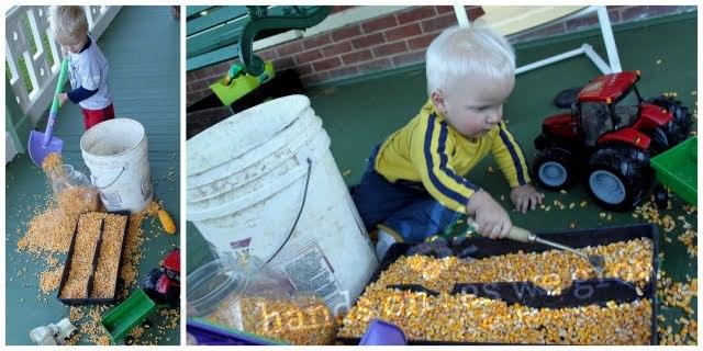 Corn Sensory Activity