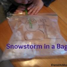 jdaniel4smom_snowstorm_bag_title