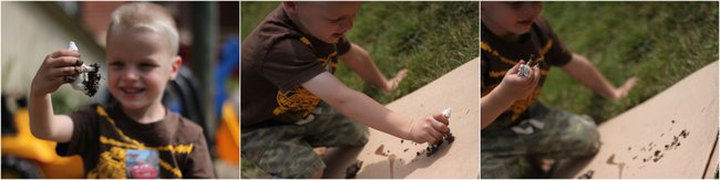 Mud Animal Tracks Printing Activity