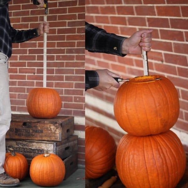 Making Mr. Pumpkin Man