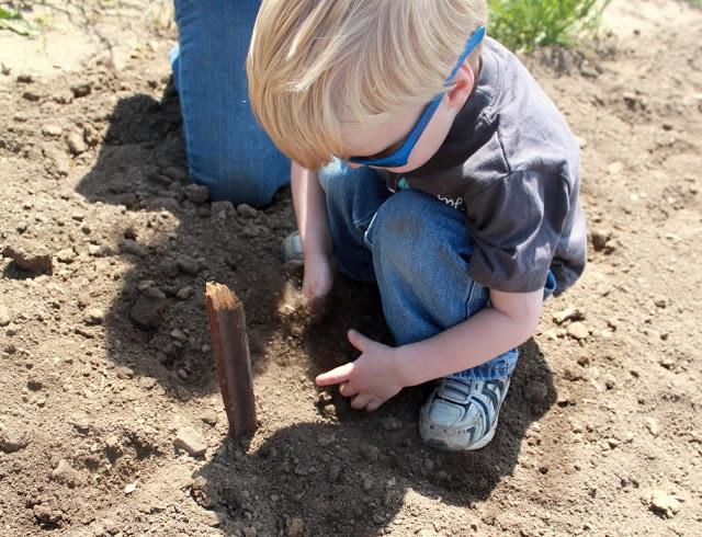 Outdoor Play : Gardening