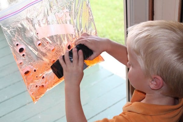 Sensory bag on window
