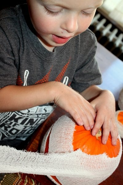 Wrapping pumpkin in gauze