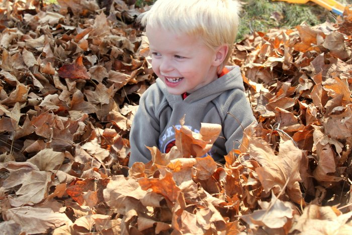 Play in the leaves this fall
