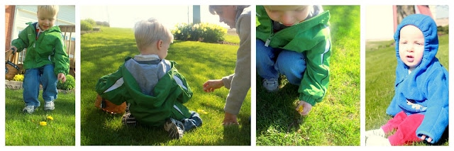 Outdoor Play : Dandelion Picking