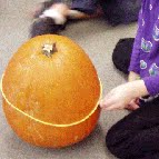 pumpkin activity