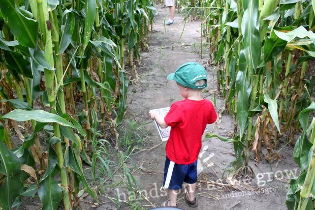We loved exploring a corn maze so much that we decided to make a big chalk maze at home!