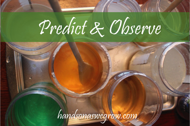 what dissolves, predict & observe