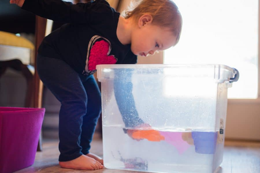sink or float experiment is perfect for water