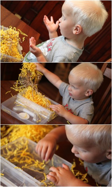 Toddler Sensory Treasure Hunt