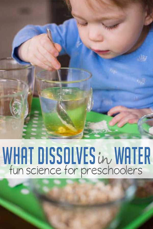 learn what dissolves in water with a preschool science experiment. Black Bedroom Furniture Sets. Home Design Ideas