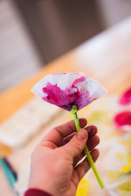 Make flower with tissue paper and pipe cleaners flowers healthy once the pipe cleaner was on i messed with the flowers to make them look alright mightylinksfo