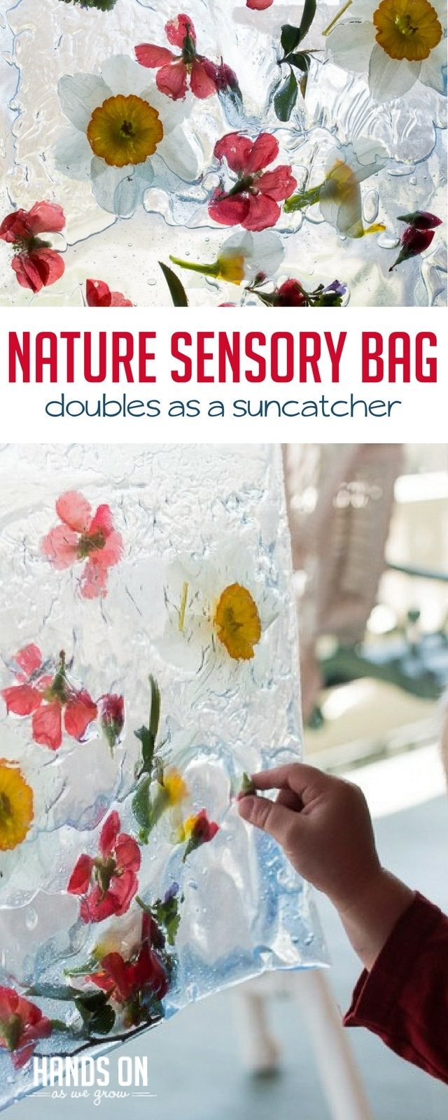 Build a combo sensory bag and suncatcher that brings Spring inside with a Nature Sensory Bag!