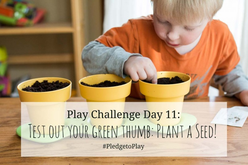 Day 11 Play Activity: Plant a seed! Pledge to play for an hour every day for 30 days?