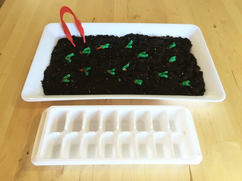 This invitation is a simple garden fine motor activity that is perfect in the Spring. It uses a transfer motion and also strengthens hand eye coordination.