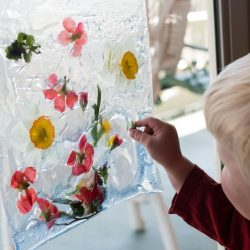 real flower crafts activities for kids hands on as we grow