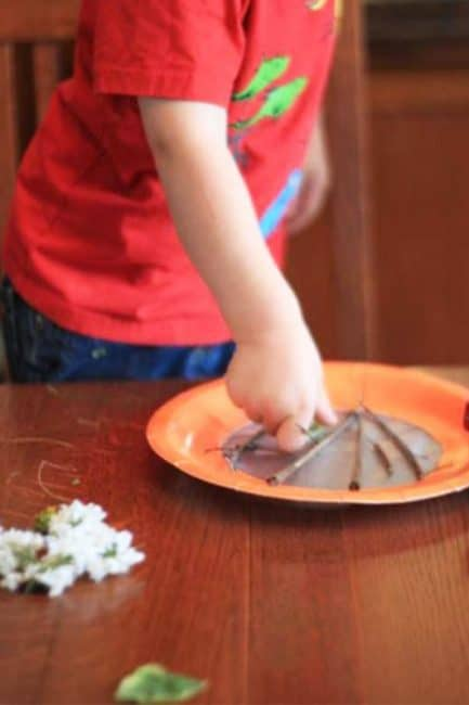 Make a pretty nature collage suncatcher with your toddler in this super simple SIY!
