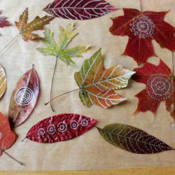 autumn-leaf-art-leaf-drawing-and-doodling1