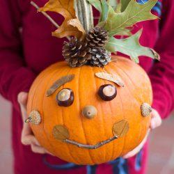 No Carve Nature Pumpkins