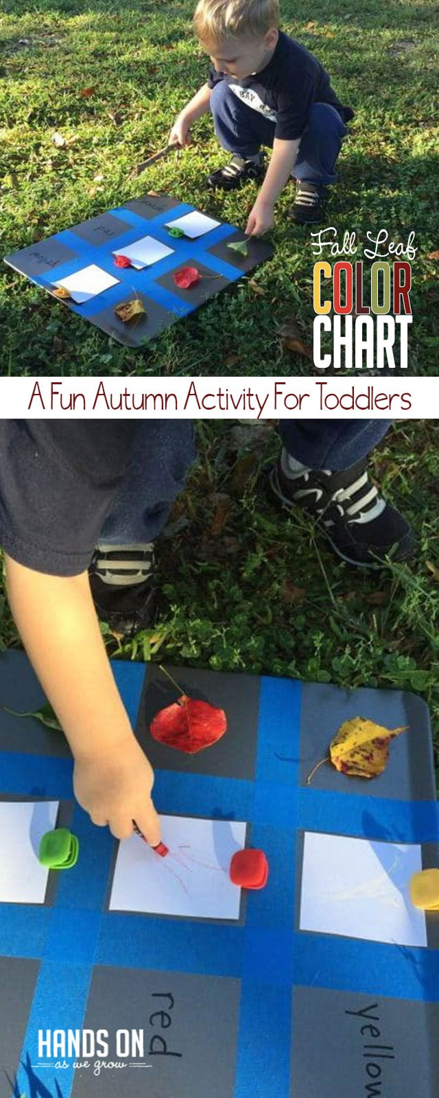 Make A Toddler Color Chart With Colorful Fall Leaves
