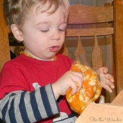 Exploring Pumpkin Guts
