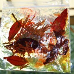 Orange Leaf Bag