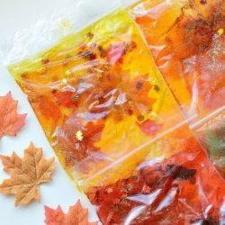 Fall Squishy Bags