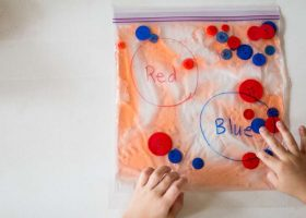 Color Sorting Sensory Bags