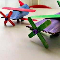 Toilet Paper Roll Airplane With Propellor
