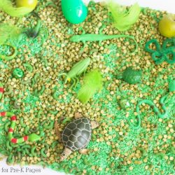 One Color Sensory Bin