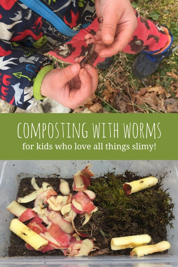 How To Make A Composting Bin With Worms Hands On As We Grow