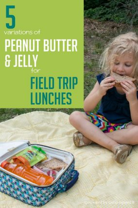 5 Variations of Peanut Butter and Jelly for Field Trip Lunches