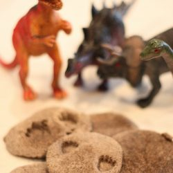Dinosaur Fossil Footprints- I Can Teach My Child