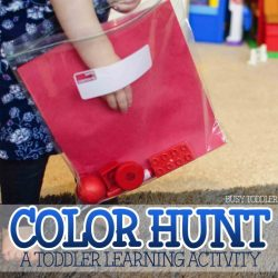 Busy Toddler- Color Hunt