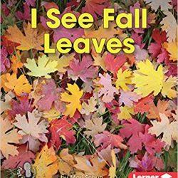 I See Fall Leaves by Mari Schuh