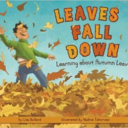 Leaves Fall Down by Lisa Bullard