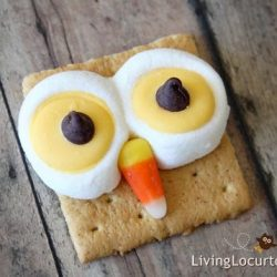 Owl S'mores- Living Locurto
