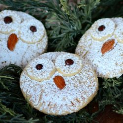 Snowy Owl Cookies- Savoring Time in the Kitchen