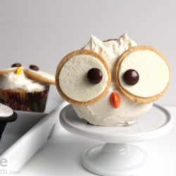 Snowy Owl Cupcake- Hip Foodie Mom